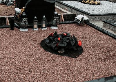 gelynai-29